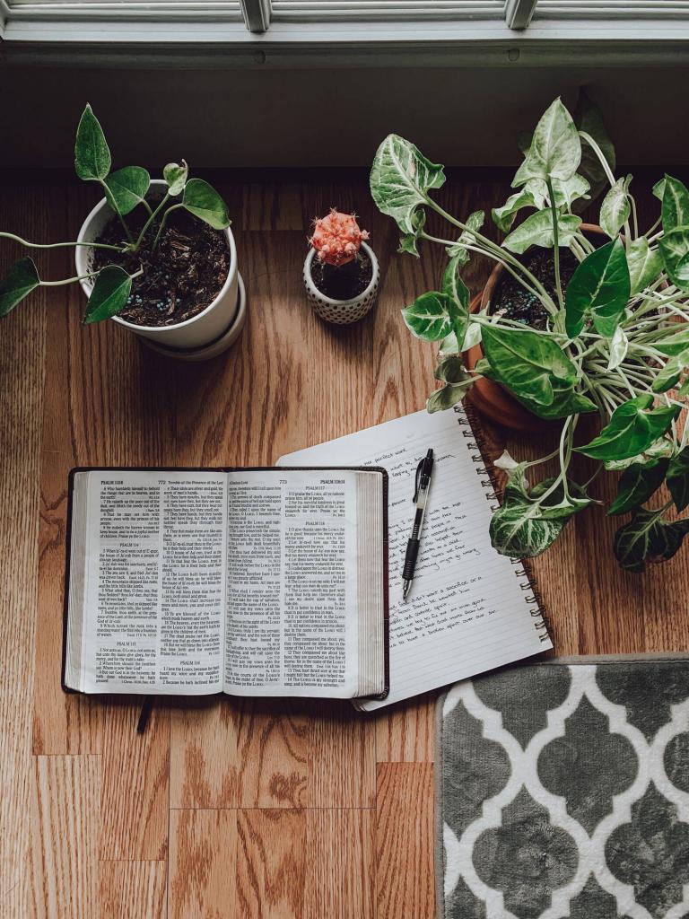 Las mejores Biblias de estudio