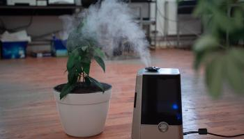The best humidifiers