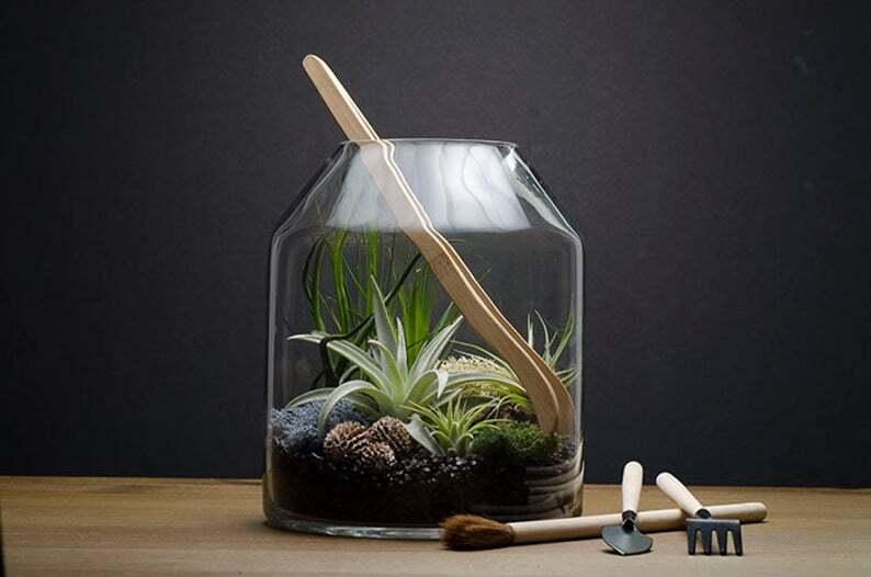 Artizan Terrarium Kit Air Plants