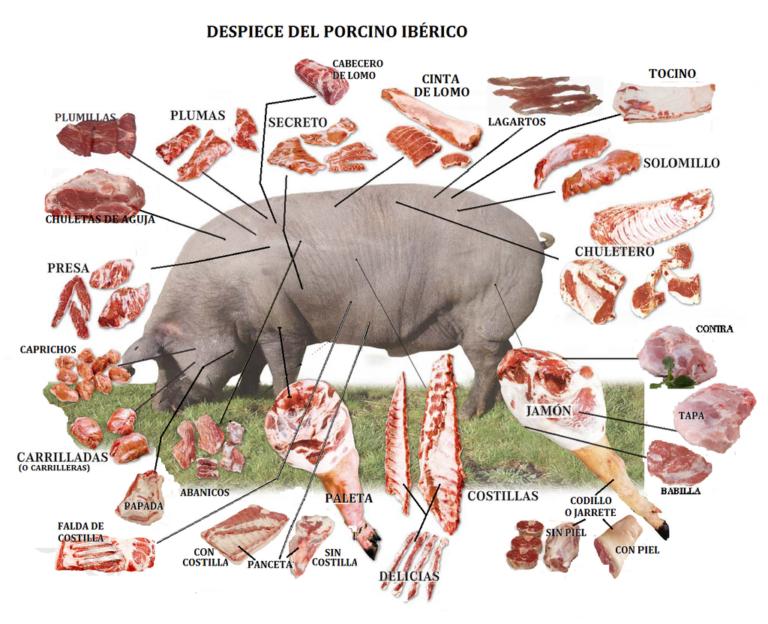 Despiece de cerdo