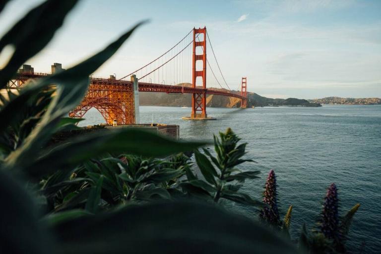 Cóctel San Francisco